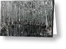 Swamp Greens Greeting Card