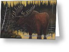 Swamp Moose Greeting Card