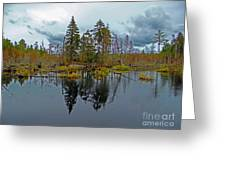 Swamp Reflection Greeting Card