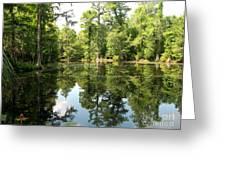 Swampland Reflection At The Plantation Greeting Card