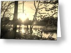 Swampy Sunset #4 Greeting Card
