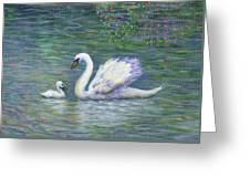 Swan And One Baby Greeting Card