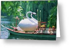 Swan Boats In A Lake, Boston Common Greeting Card