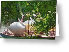 Swan Boats Greeting Card