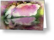 Swan Lake Reflection Greeting Card by Jill Balsam