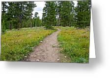 Swan Lake Trail In Grand Teton National Park-wyoming Greeting Card