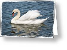 Swan On Blue Waves With Border Greeting Card