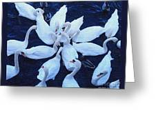 Swan Party Greeting Card