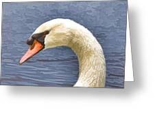 Swan Portrait Greeting Card