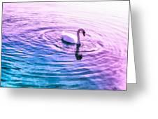 Swan Ripples Greeting Card