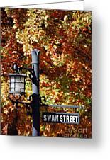 Swan Street Greeting Card