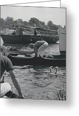 Swan Upping Picturesque Ceremony That Has Not Changed For Greeting Card