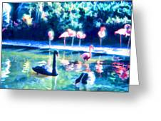 Swans And Flamingos Greeting Card