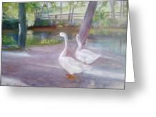 Swans At Smithville Park Greeting Card