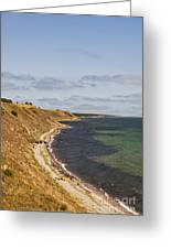 Swedish Coastline Greeting Card