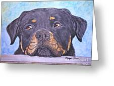 Rottweiler's Sweet Face Greeting Card