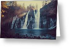 Sweet Memories Greeting Card by Laurie Search