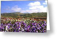 Sweet Peas Galore Greeting Card