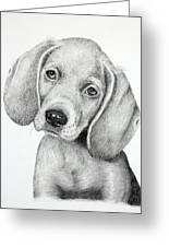 Sweet Puppy Love Greeting Card