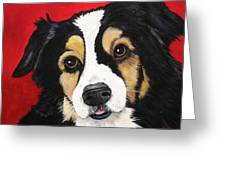 Sweet Scout Greeting Card