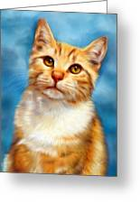 Sweet William Orange Tabby Cat Painting Greeting Card