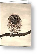 Sweetest Owl Greeting Card