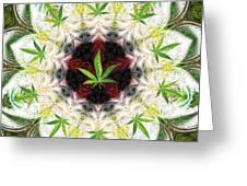 Sweetleaf Mandala Greeting Card