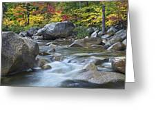 Swift River In Fall White Mountains New Greeting Card