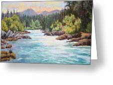Swiftwater Greeting Card