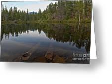 Swim Lake Greeting Card