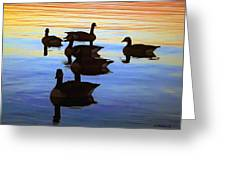 Swimming Geese Greeting Card