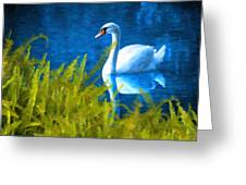 Swimming Swan And Ferns Greeting Card