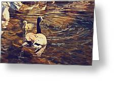 Swimming With Mom Greeting Card