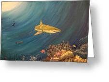 Swimming With Sharks Greeting Card