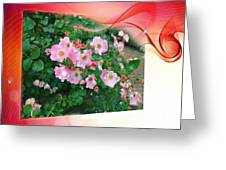 Swirl Of Colors Greeting Card