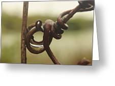Swirly Branch Greeting Card