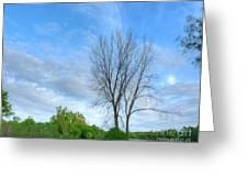 Swirly Sky And Tree Greeting Card