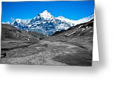 Swiss Alps - Schreckhorn And Valley In Black And White Greeting Card
