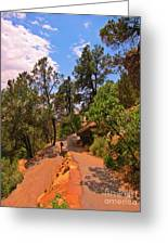 Switchback Path Greeting Card