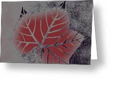 Sycamore Leaf Greeting Card