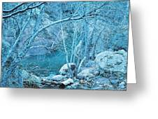 Sycamores And River Greeting Card
