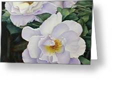 Sydneys Rose Oil Painting Greeting Card