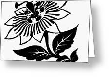 Symbol Passion Flower Greeting Card