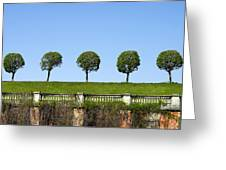 Symmetric Trees Over Old Fence Greeting Card