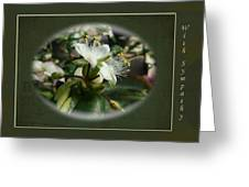 Sympathy Greeting Card - Elegant Floral Green And White Greeting Card
