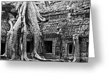 Ta Prohm Roots And Stone 01 Greeting Card