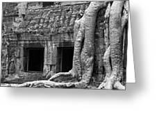 Ta Prohm Roots And Stone 02 Greeting Card