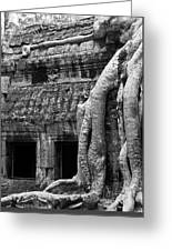 Ta Prohm Roots And Stone 05 Greeting Card