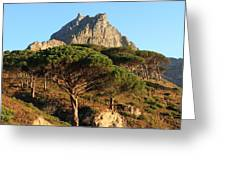 Table Mountain View Greeting Card