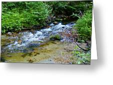 Tacoma Creek 2 Greeting Card